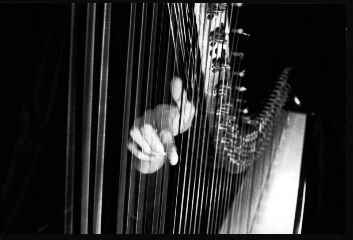 Harfe Unterricht Harfenunterricht Liebert